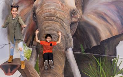 Top 5 Interactive Experiences in LA